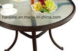 /Rattan al aire libre/silla y vector del acoplamiento de Texilene de los muebles del jardín/del patio fijados (HS 2039C y HS 6001DT)