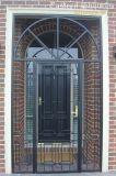 美しい装飾の錬鉄のドア