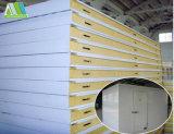 Pannello a sandwich isolato acciaio di colore ENV per il tetto e la parete
