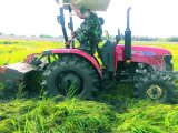 Bauernhof-Traktor 45HP (WD454)