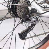 Selbst-Konzipiertes bunte neue weibliche Stadt-elektrisches Fahrrad