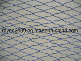Rete da pesca blu dell'attrezzatura di pesca del Multifilament 30mmsq