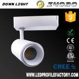 Gran cantidad de lúmenes de luz LED regulable vía con CE