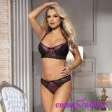 En Stock Naughty púrpura Boudoir Net Sexy Bra Panty Set