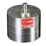 CB-Bns16 da bomba de engrenagens em aço inoxidável de cerâmica