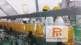 Het Automatische Instrument van uitstekende kwaliteit van het Handvat van de Fles 3L-10L/Dringende Machine