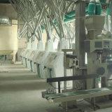 商業高性能のムギの製粉機械100t/24h