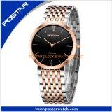 Horloges de van uitstekende kwaliteit van het Roestvrij staal van het Horloge van de Zakenlieden van het Glas van de Saffier
