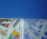 Plaques UV en aluminium sensibles de Ctcp