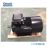 0.18-630kw Elektrische Motor in drie stadia (tefc-IP55, de norm van CEI)