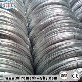 Collegare galvanizzato a basso tenore di carbonio del ferro dei 19 calibri
