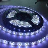 SMD5630 RGB LED tira de luces de control remoto RoHS Rainbow-Color/ CE