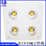 温室の省エネ600 Wの穂軸LEDは医学のプラントのために軽く育つ