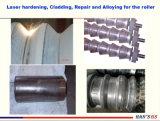 Специализированные в предоставлении всех видов передачи вальцов нефтехимических оборудование пресс-форм для автомобильной промышленности Термообработка металлических частей
