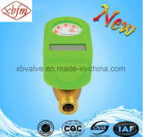 Metro ad acqua freddo della scheda d'ottone del corpo CI (colore verde)