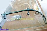 Toldo barato de calidad superior/el llover/surtidor del vidrio laminado del pabellón