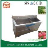 Esterilizador del ozono en la arandela vegetal Uesd para el proceso vegetal