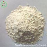 El arroz harina de proteína en polvo de proteína animal
