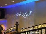 luz do projetor do logotipo do diodo emissor de luz da decoração do restaurante do diodo emissor de luz 10000lm interna