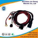 Harnais de raccordement externe de fil d'automobile avec la conformité de RoHS