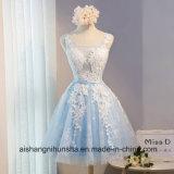 Spitze-Blumen-Bankett reizvolles transparentes A - Zeile Partei-Kleid