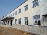 Almacén prefabricado industrial de la estructura de acero del palmo grande (ZY318)