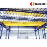 핵자 두 배 광속 브리지 윈치 기중기 30 톤