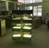 Luz ao ar livre da área do diodo emissor de luz do Luminaire de ETL
