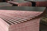 Pour la construction en bois de pin (18mm)