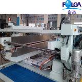 Línea recta de vidrio doble línea de producción de la máquina de bordes (FSM0825BL + FPT2516 + FSM0816BL)