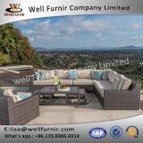 Disposizione dei posti a sedere profonda buona del vimine 10PC di Furnir Wf-17084