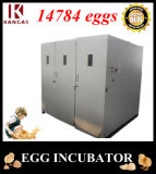 Prix automatique de 14784 de poulet d'oeufs de ménage de la machine la plus neuve d'oeufs de Poulty incubateurs d'oeufs (KP-30)