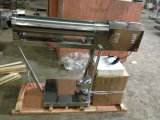 Machine de remplissage automatique à capsule claire et colorée (NJP2200)