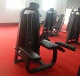 Máquina do Bodybuilding de Precor/banco olímpico (SD26)
