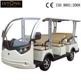 Пассажирский автомобиль 8 Seater электрический на сбывании