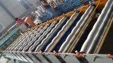 Dx 1100 vitrificou o rolo da telha que dá forma à maquinaria