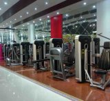 Macchine della macchina di forma fisica di esercitazione di Glute/strumentazione di ginnastica
