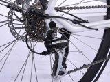 2017 700c車輪のサイズの最も新しい電気バイク(証明書と)