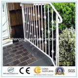 Revêtement en poudre extérieur Clôture en métal / clôture de jardin