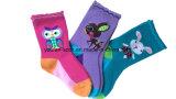 Bunte Baumwollkind-Socken