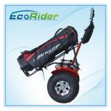 Бесщеточный двигатель 2 Колеса скутера с электроприводом