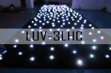 LED-sterrengordijn
