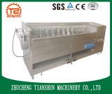 Machine d'écaillement industrielle automatique de pomme de terre à échelle réduite avec le balai de vis