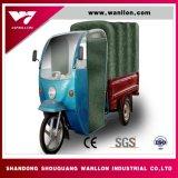 800W Rainning 증거 오두막 세발자전거, 3개의 바퀴 기관자전차
