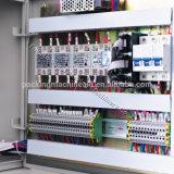 De multifunctionele Machine van de Verpakking van het Hoofdkussen SS304 voor Onmiddellijke Noedels