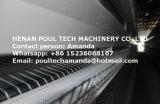 H Kooi van de Kip van de Laag van het Type de Automatische die in het Landbouwbedrijf van het Gevogelte voor Verkoop wordt gebruikt
