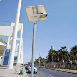Todos en un fabricante chino de calle de las luces de los productos solares elegantes del jardín con la batería de litio