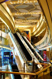 Escalator d'intérieur pour le centre commercial