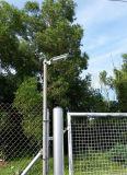 Bewegungs-Fühler-Solarstraßenlaterne-Hersteller