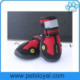 反射ヴェルクロ険しいスリップ防止足底が付いている防水犬の靴